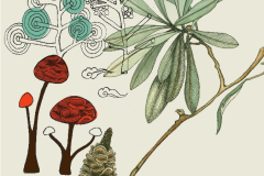 Treeflower